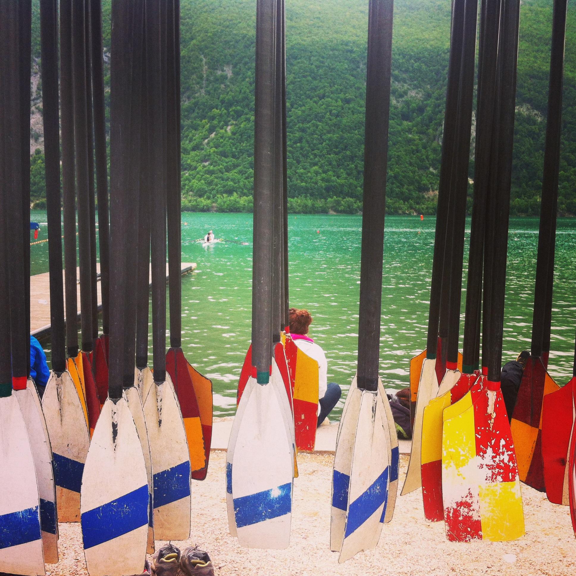 Les mondiaux d'aviron