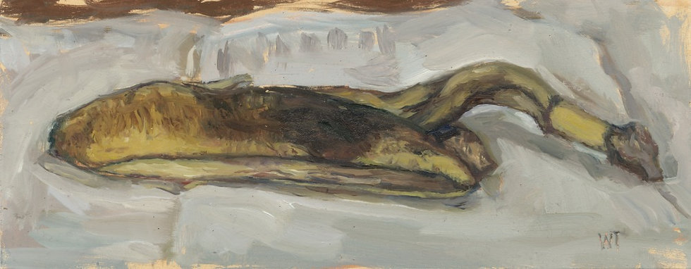 Banana Skin, aka portrait of 2020, 10 x 4 inches
