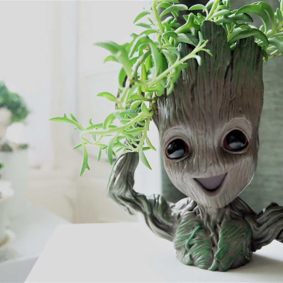 Hairy Groot