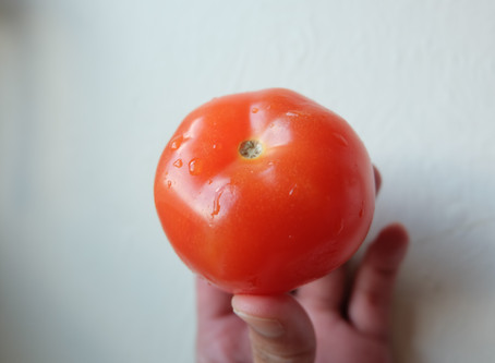 How to grow tomatoes from grocery tomatoes