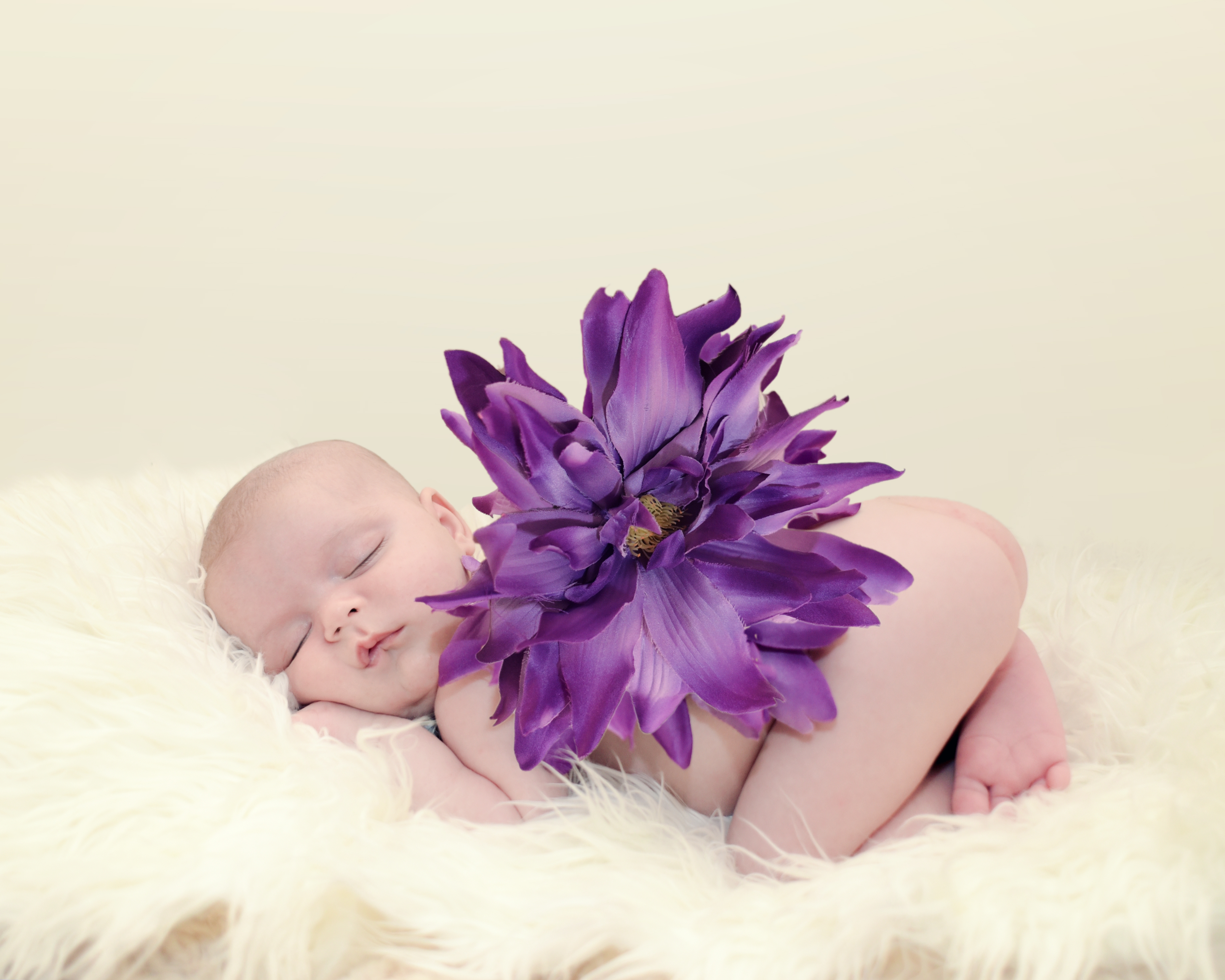 Louise Reed Baby Photography