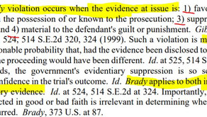 Brady and 'Possession of State': Criminal Background Search