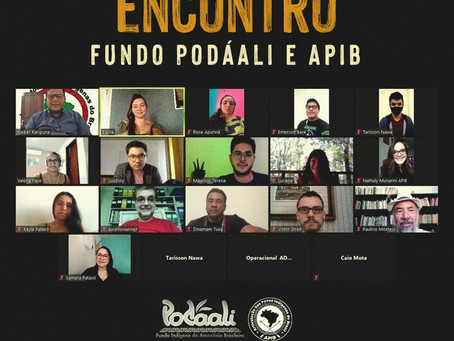 Podáali reúne-se com APIB para apresentação do Fundo Indígena da Amazônia Brasileira