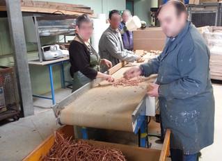 Les ouvriers de l'ESAT ont la patate !