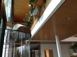 Faux plafond existant