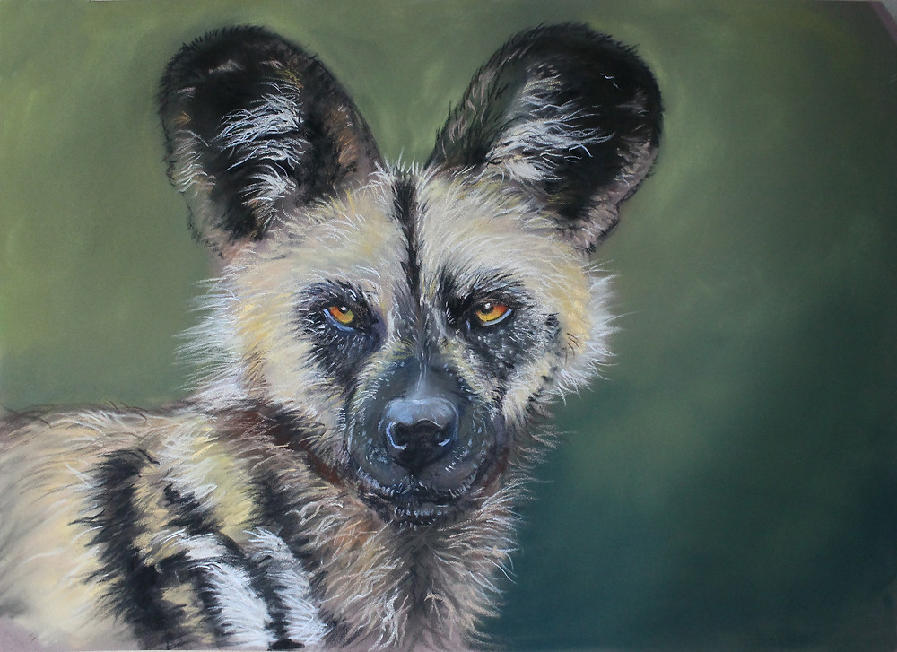 African Wild Dog in Unison soft pastel and pastel pencil