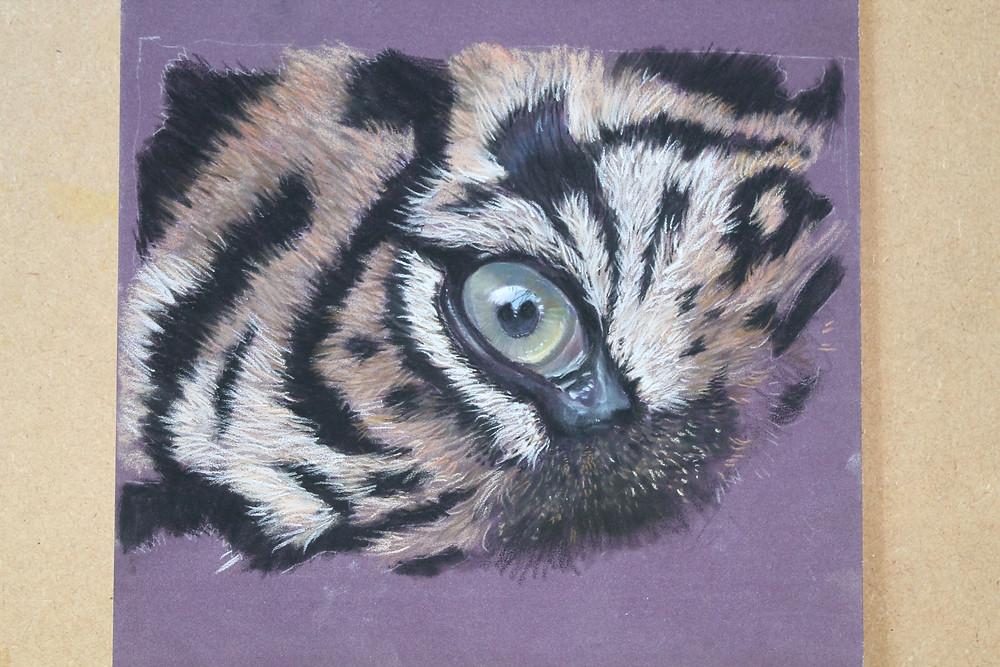 Tiger Eye on Pastelmat using Pastel pencil