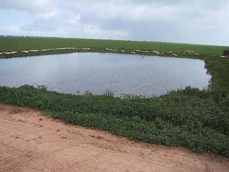 pig lagoon.jpg