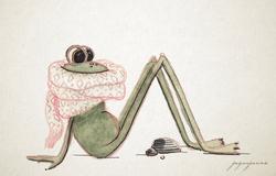 Rana con bufanda