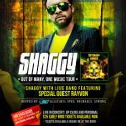 shaggy630-150x150