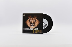 Vinyl CD-R + Kartonstecktasche