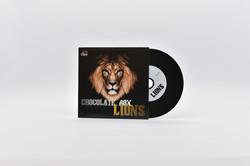 Vinyl-CD in Stecktasche
