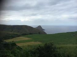 hawaii environmental management