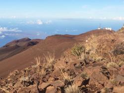 hawaii gis