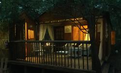 Iris Retreat Forest Room night