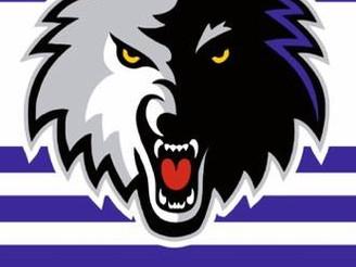The Lindleys Autocentres Nottingham Timberwolves 2019/20 roster!