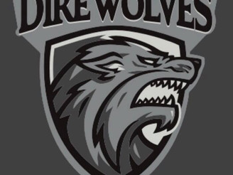 Nottingham Direwolves 2019/20 roster!