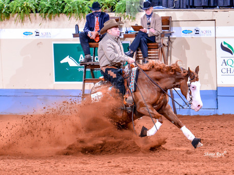 AQHA World Show Junior Reining Reserve Champion