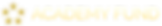 Academy-Fund-Logo--horizontal--gold.png