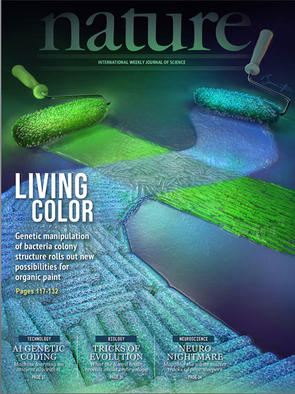 Concept cover art for a scientific article. The way bacteria organize into colonies can affect color of the colony.