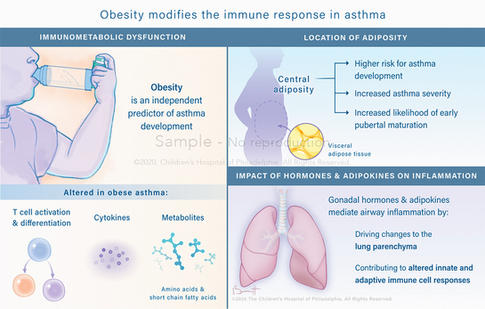 The impact of obesity on immune function in pediatric asthma