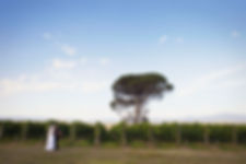 Yarra Valley natural and documentary wedding photos