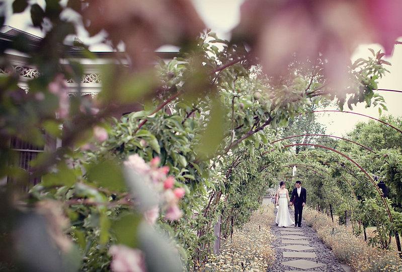 Toorak Garden Wedding ceremony
