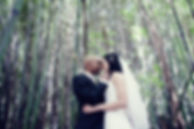bride and groom photos surrounded by bamboo at Melbourne zoo