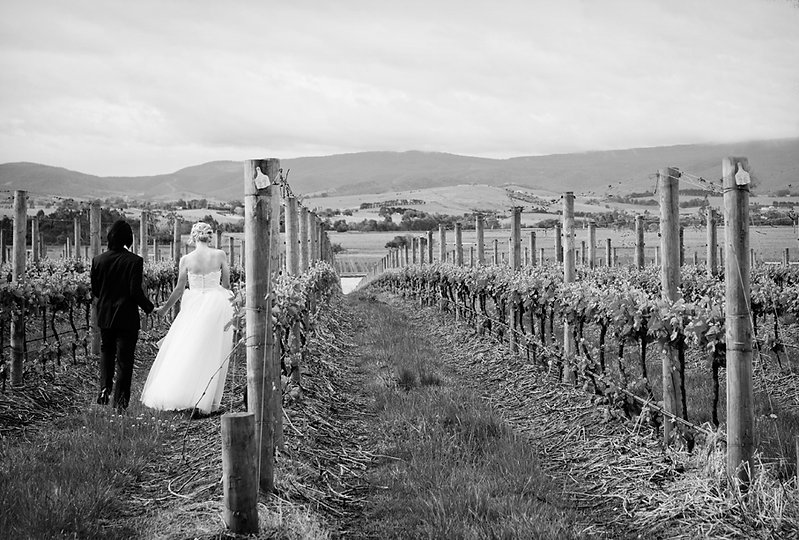casual and relaxed winery wedding in Melbourne