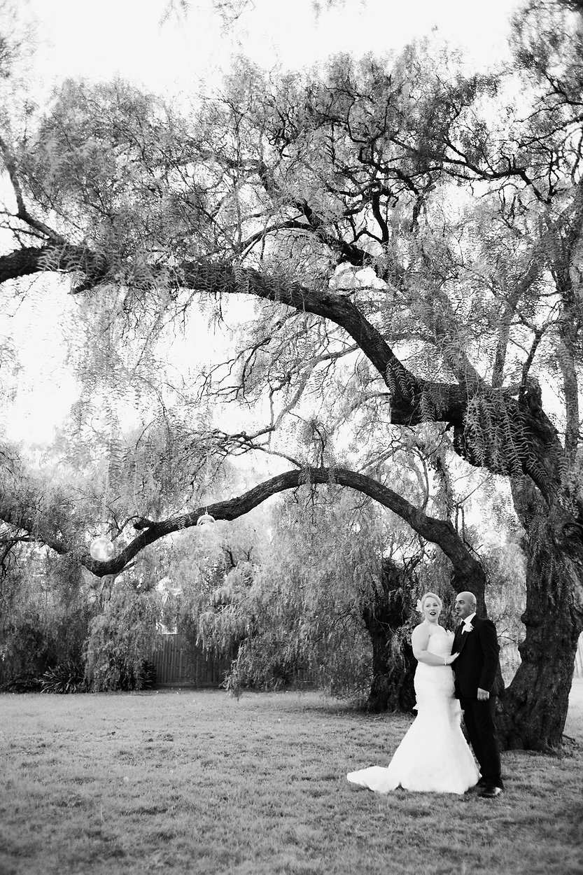 bride and grrom under a tree at meadowbank reception, Melbourne