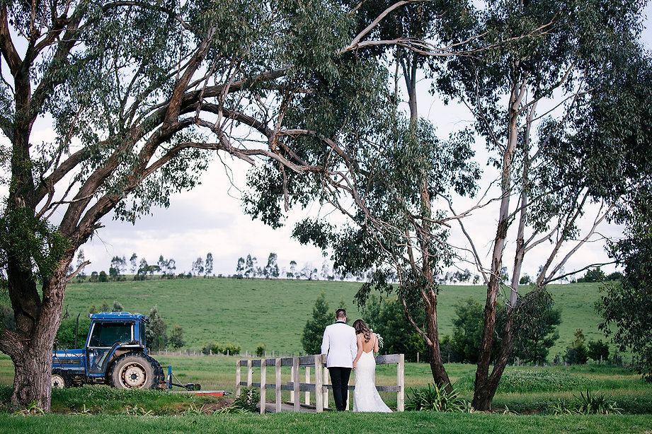 immerse winery wedding