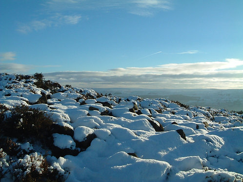 Snow on heather at Beamsley Beacon - 1, North Yorkshire  DOWNLOAD