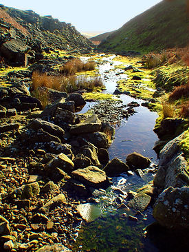 Stream near Grassington lead mines