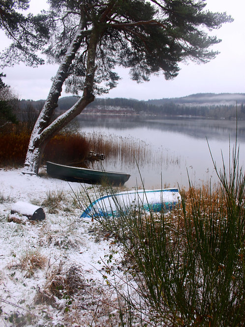 Boats on a  cold Winter's day at Loch Kinard, Scotland DOWNLOAD