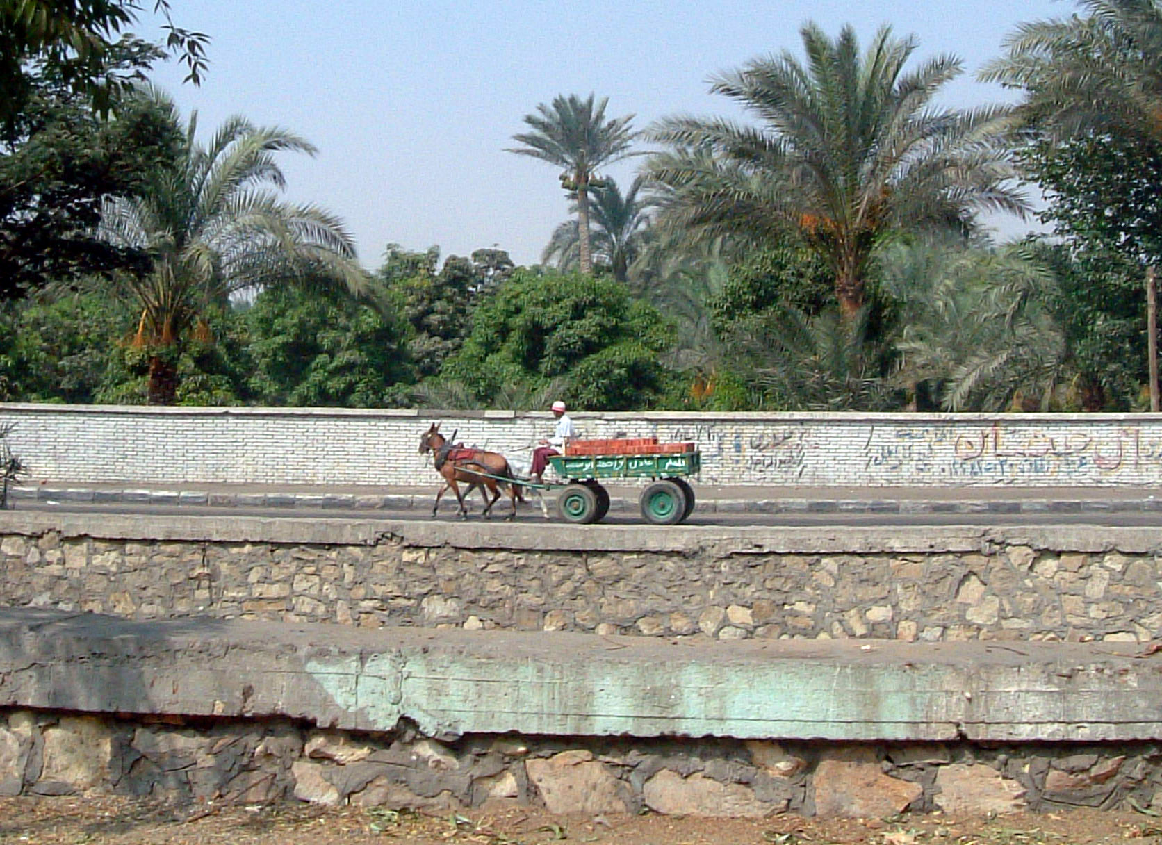 Horse wagon . Cairo