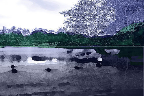The lake near Fountains Abbey, Ripon North Yorkshire