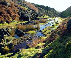Stream near Grassington