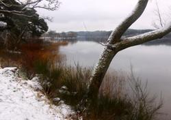 Loch Kinnard, Scotland
