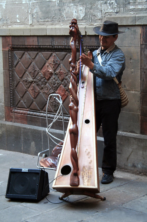 Street harp player in Barcelona