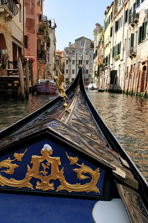 Canal trips in Venice DOWNLOAD
