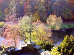 Autumn trees at Knaresborough