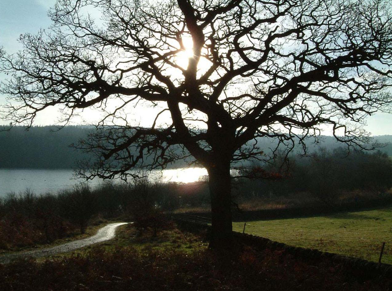 Fewston reservoir