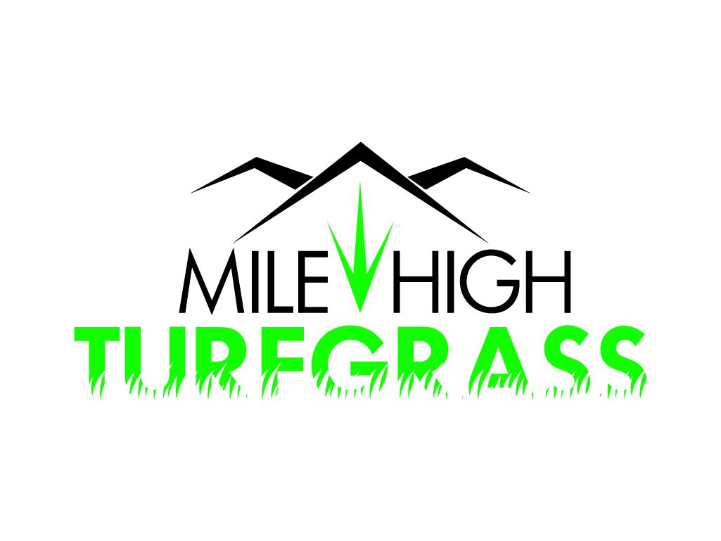 Mile High turfgrass