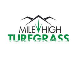 Mile High turfgrass