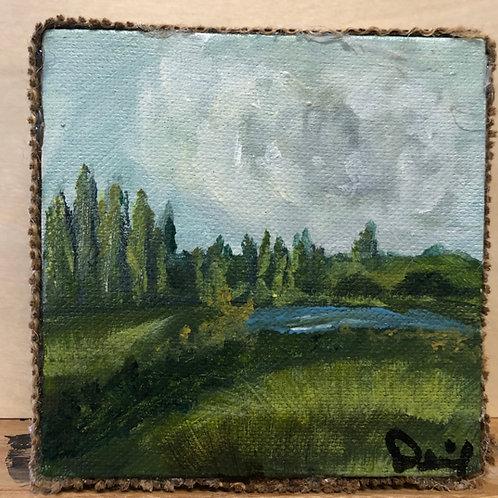 Landscape #103