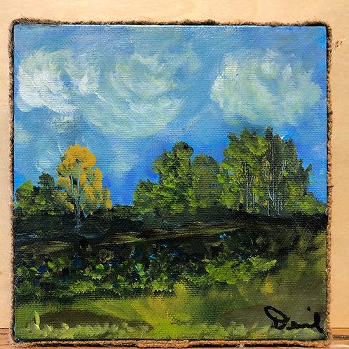 Landscape #102
