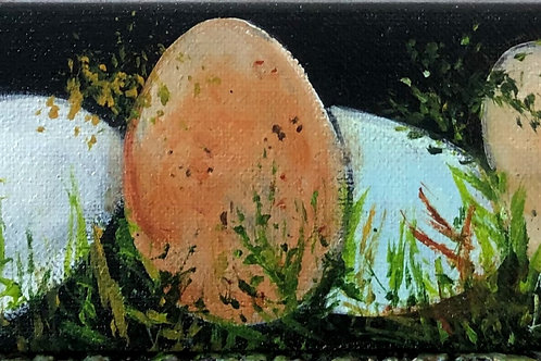 Eggs #108
