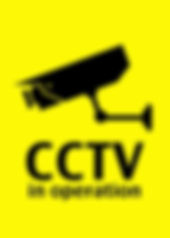 CCTV Image.jpg