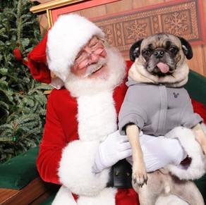 Recreio Shopping em clima natalino Pet Friendly