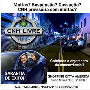 CNH-Livre.jpg
